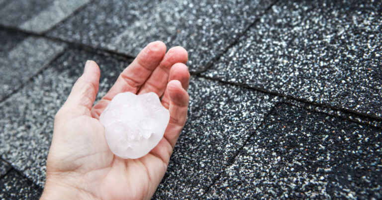Large hail in palm from storm